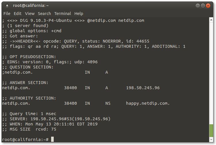 How to Install the Dig Command on Ubuntu Linux - NetDip com
